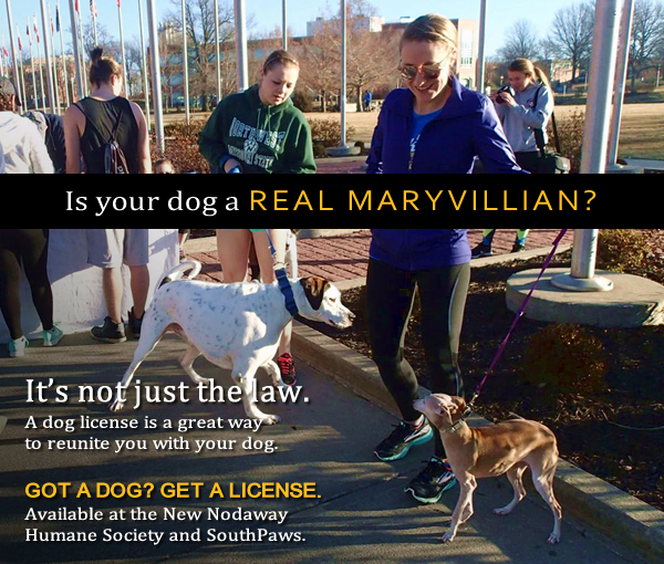 Is your dog a real Maryvillian?