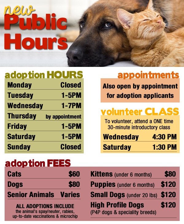 New Public Hours